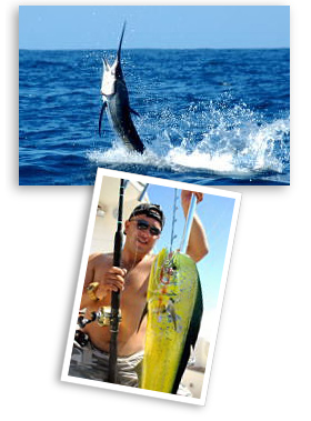 Cabo san lucas fishing charter for Cabo san lucas fishing charters prices